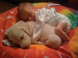 baby-sleeping-on-puppy