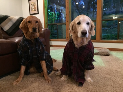 In spite of the faces they had a ball playing dress up in dad's flannel shirts